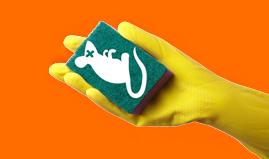 Underskrifter mod testning af rengøringsmidler på dyr