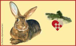 Forsøgsdyrenes Værns julegave til dyrene