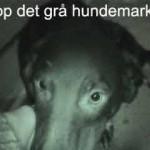 hund90