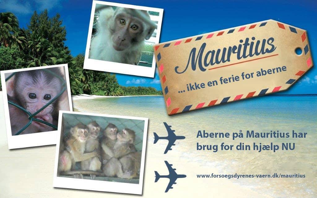 BUAV Tourism Awareness campaign,redigerad4