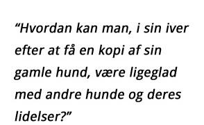citat - Kopi